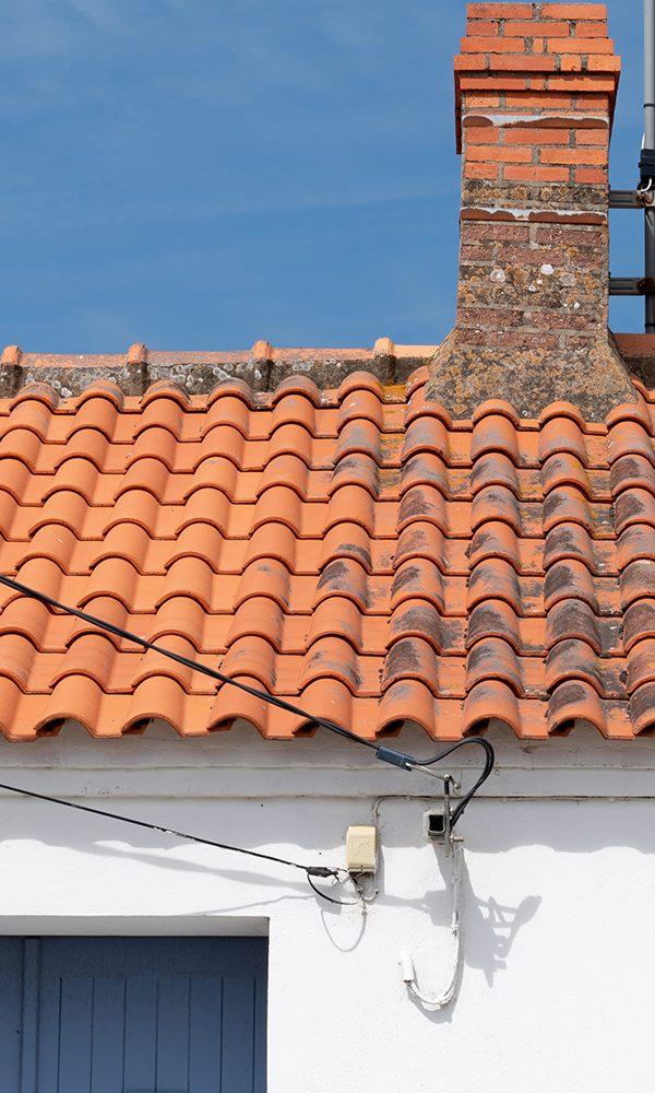 SprucedUp roof washing